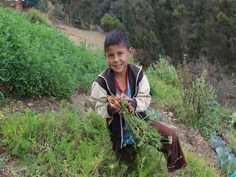 desarrollo rural soberanía alimentaria